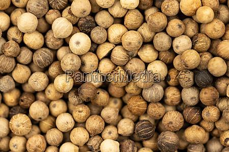 spice, background, , background, made, of, many - 28140658