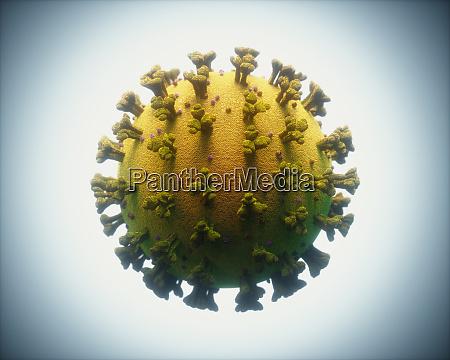 covid 19 coronavirus infections viruses