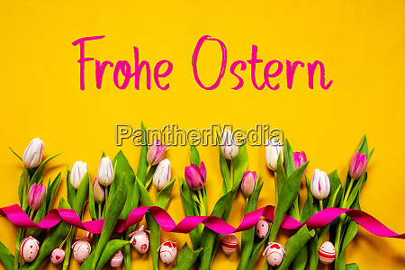 colorful tulip frohe ostern means happy