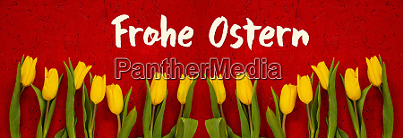 baner of yellow tulip flowers red