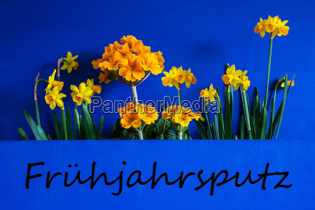 spring flowers narcissus text fruehjahrsputz means
