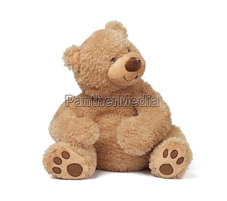 big curly brown teddy bear sits
