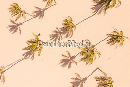 aerial view of paracuru ceara brazil