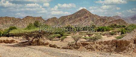 ethiopian landscape ethiopia africa wilderness