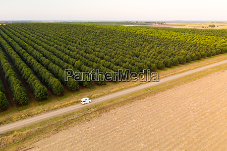 aerial view of north isis queensland