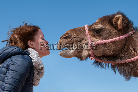 dromedary fell in love with young