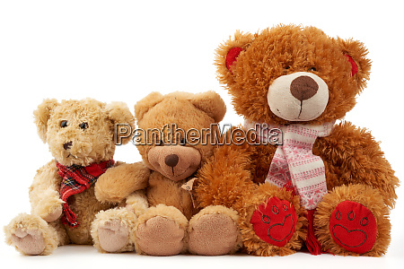 cute curly brown teddy bears concept