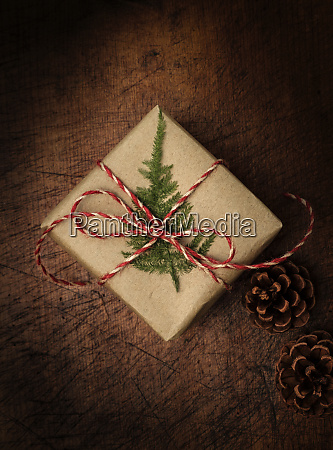 pine frond tied to christmas present