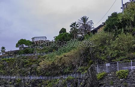 cliff path in manarola cinque terre