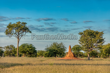 african landscape namibia africa wilderness
