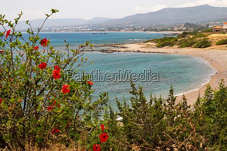 scenic view at the coastline of