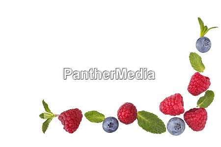 fresh berries border