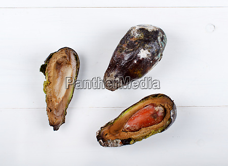 rotten avocado on a white table