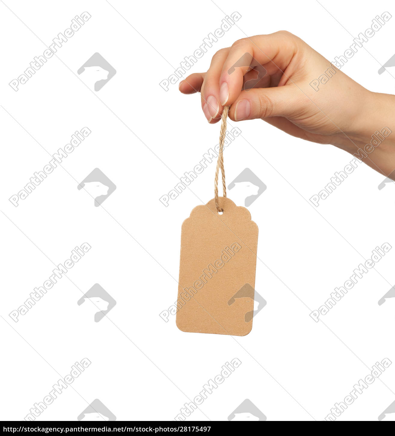female, hand, holds, a, cardboard, price - 28175497
