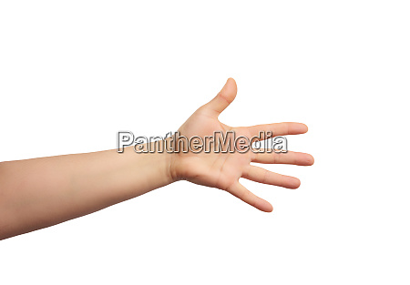 outstretched hand of man open hand