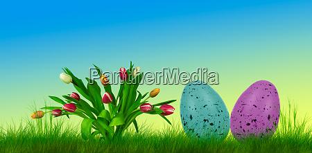 colorful easter eggs on grass and