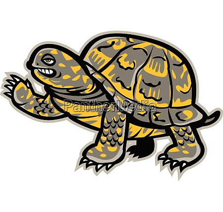 eastern box turtle waving mascot