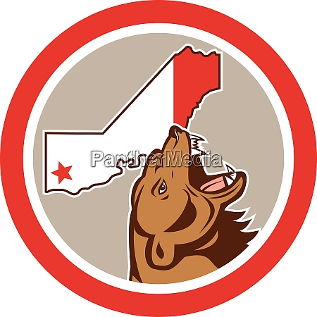 bear with california state map circle