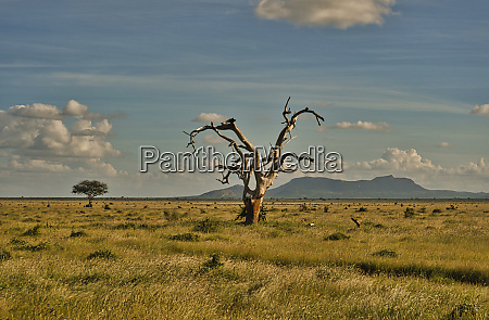 landscape pictures from the national park