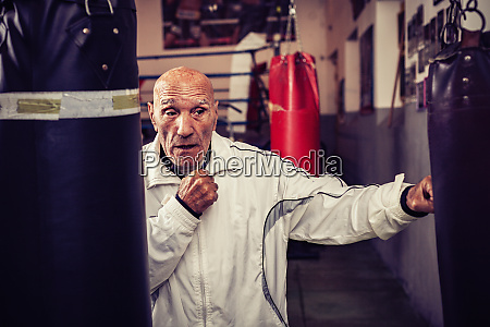 portrait of boxing coach in boxing