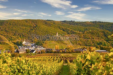 beilstein small village on the moselle