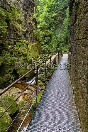 metal footbridge in the gorge of