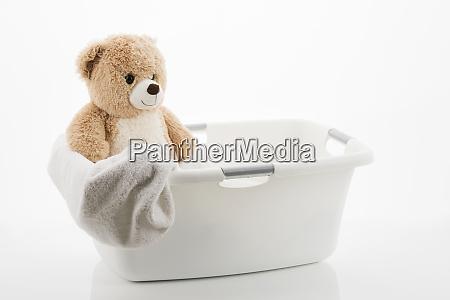 teddy in a laundry basket
