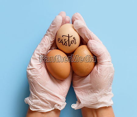 hands in gloves keeping eggs with