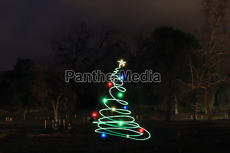 christmas, tree, outdoors, in, the, forest - 28215573