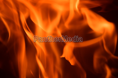 fire, in, the, fireplace, , log, fire, - 28215984