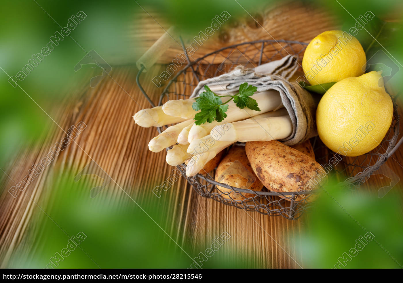 fresh, white, asparagus - 28215546