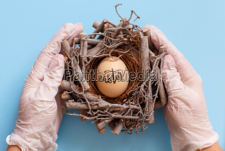 hands, in, gloves, keeping, nest, with - 28215558