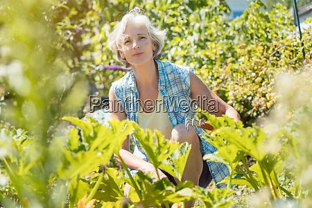 senior, woman, working, in, her, garden - 28215188