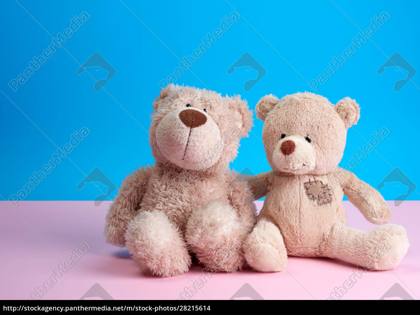 two, teddy, beige, bears, sitting, huddled - 28215614