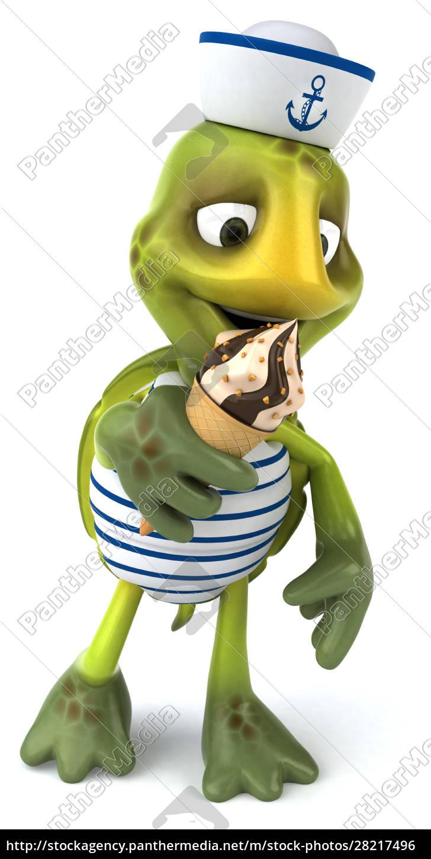 fun, turtle - 28217496