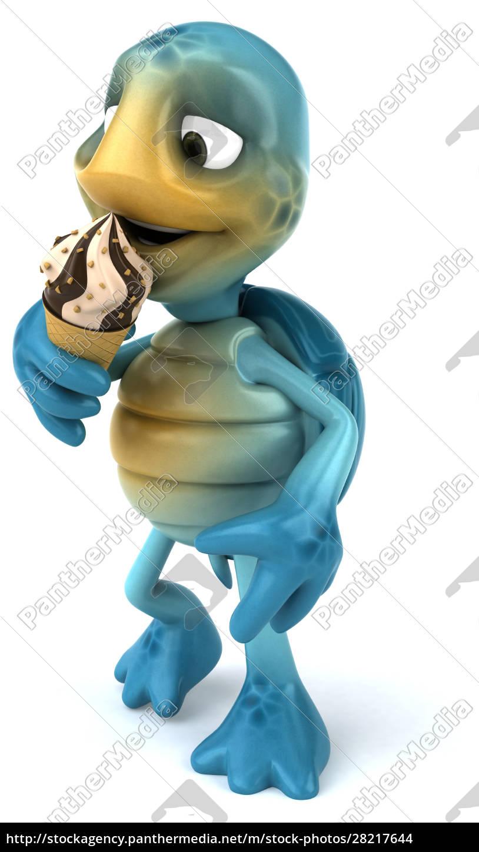 fun, turtle - 28217644