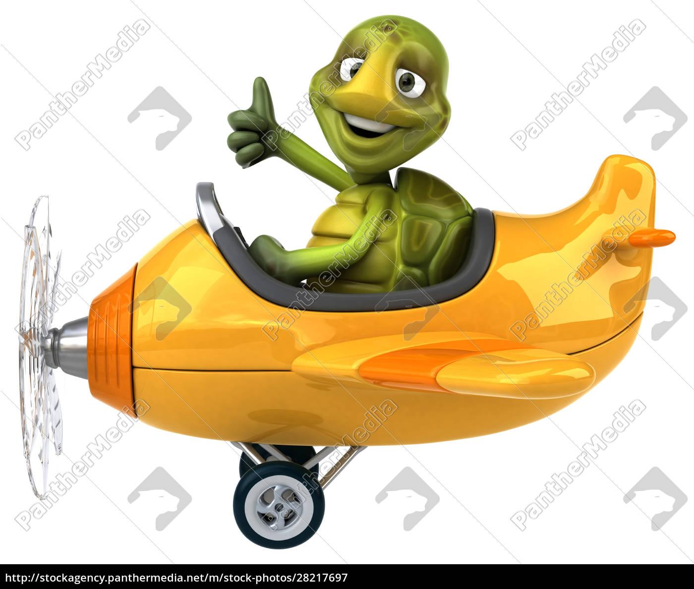 fun, turtle - 28217697