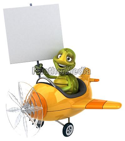 fun, turtle - 28217772