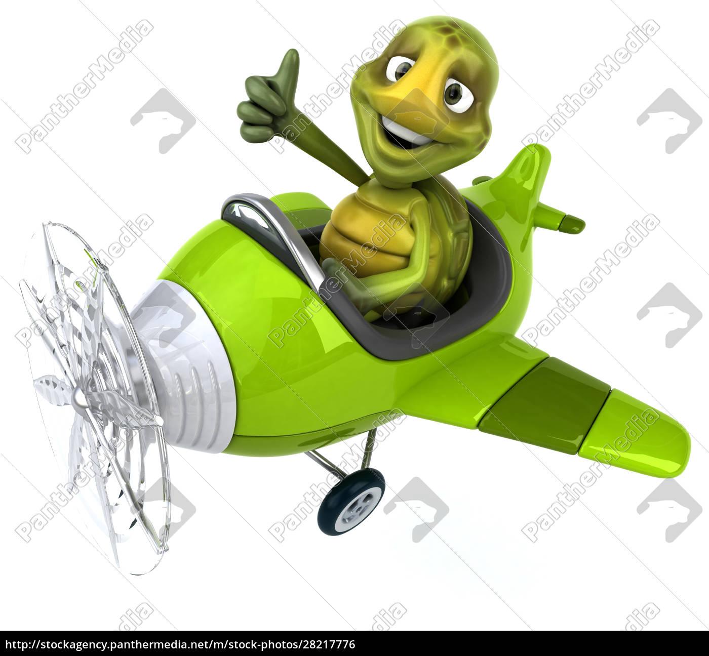 fun, turtle - 28217776