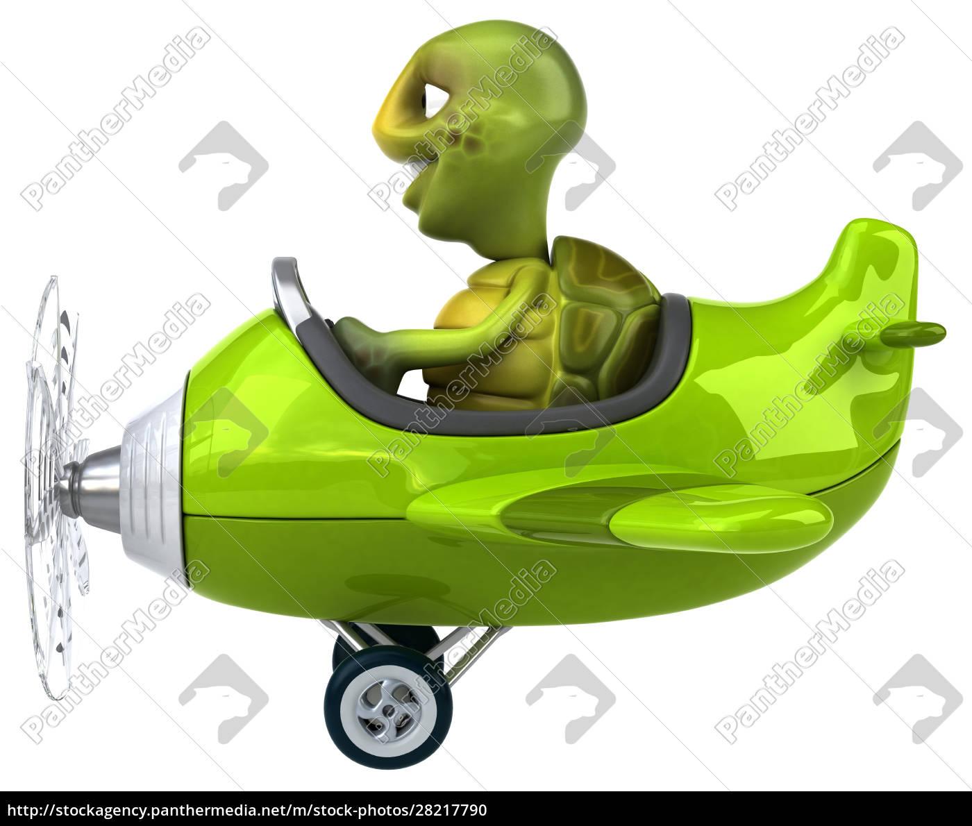 fun, turtle - 28217790