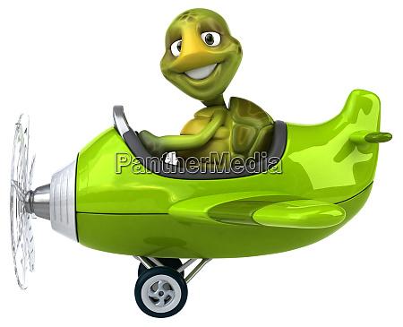 fun, turtle - 28217791