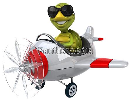 fun, turtle - 28217947
