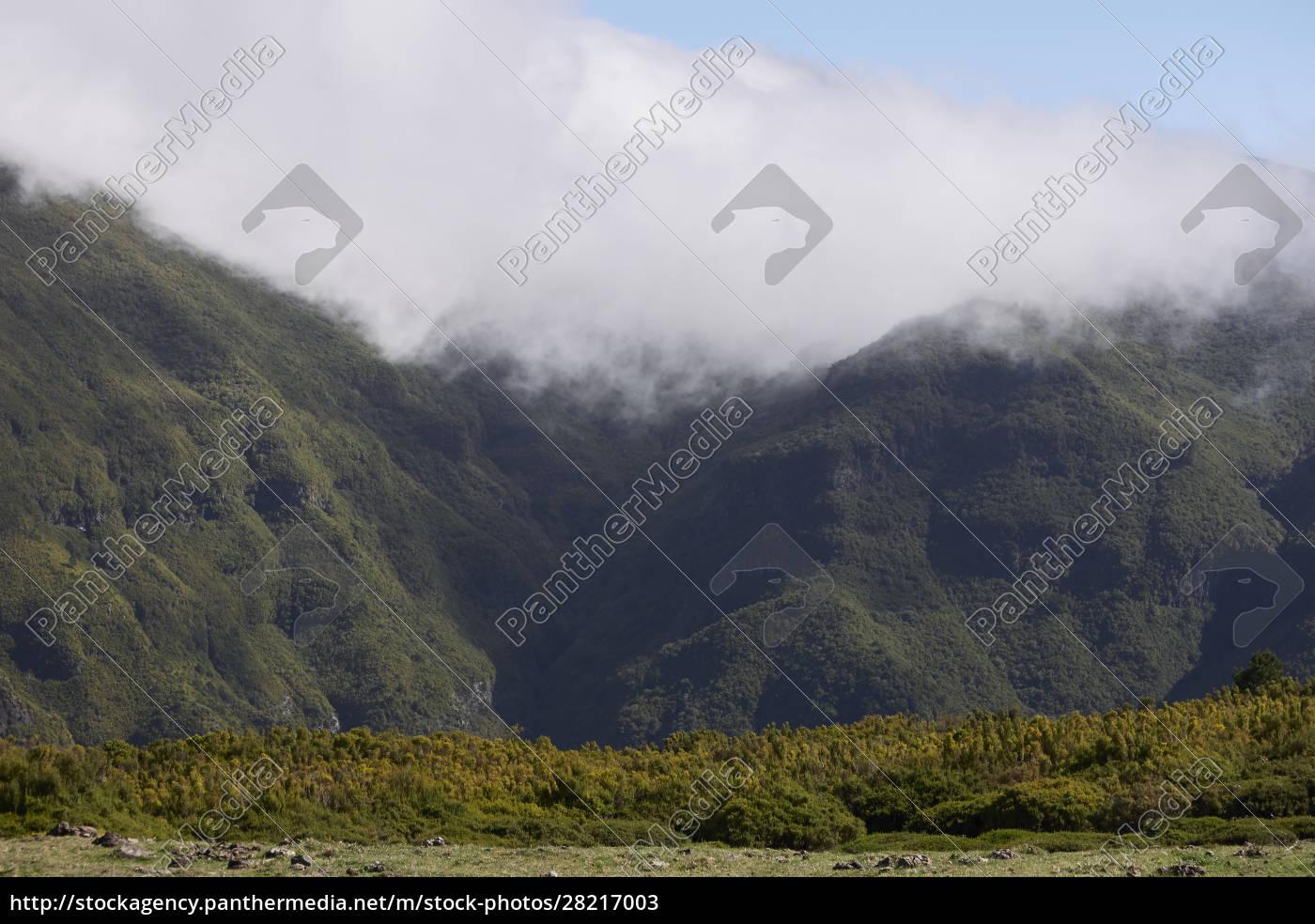 madeira, island - 28217003