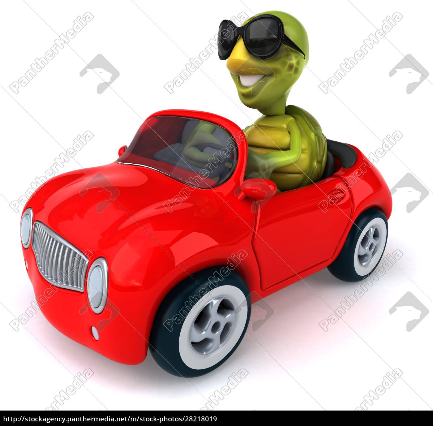 fun, turtle - 28218019
