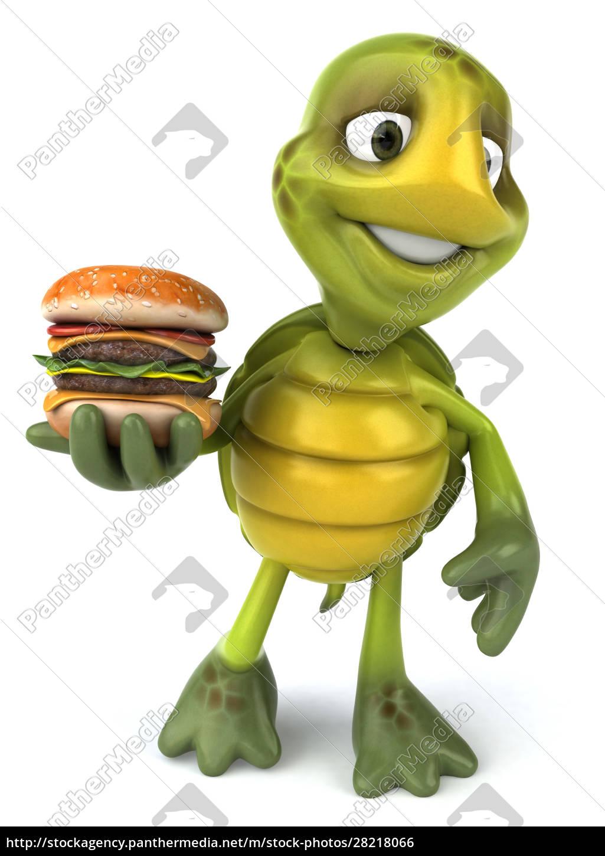 fun, turtle - 28218066