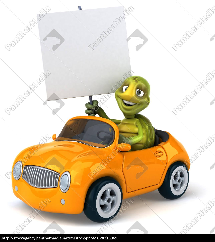 fun, turtle - 28218069