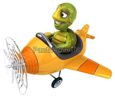 fun, turtle - 28218097