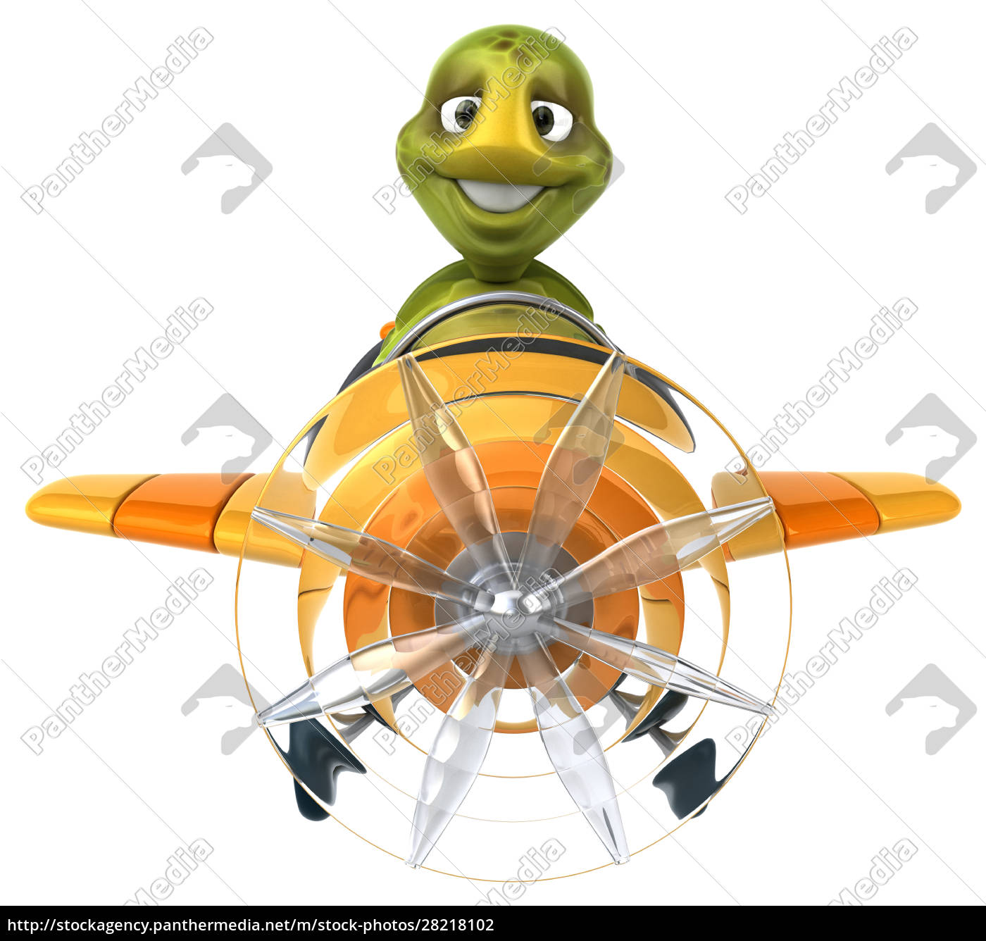 fun, turtle - 28218102
