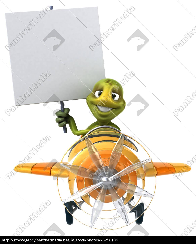 fun, turtle - 28218104