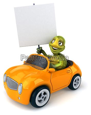 fun, turtle - 28218122